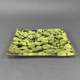 Glass Rolling Tray 'Buds'