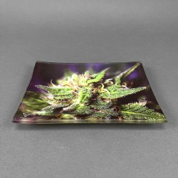 Glass Rolling Tray 'Blue Dream'