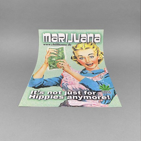CH Retro Poster 'Hausfrau'